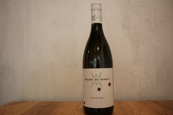 Natural Wine Bio